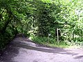 Footpath junction above Llandyfriog - geograph.org.uk - 1344725.jpg