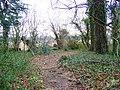 Footpath near Damerham - geograph.org.uk - 1160907.jpg