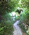 Footpath off Buttercup Lane - geograph.org.uk - 204336.jpg