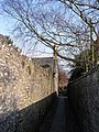 Footpath towards the Churchyard from Paul Street, Shepton Mallet - geograph.org.uk - 378404.jpg