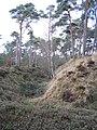 Fort Wiesel (30317252574).jpg