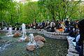 Fountains (7174593976).jpg