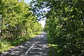 Fredericton Trail looking north.jpg