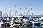 Friedrichshafen - Bootshäfen - Hafen 2 006.jpg