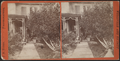 Front view of a home, Wellesville, N.Y, from Robert N. Dennis collection of stereoscopic views.png