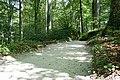 Fußweg Felsengarten Sanspareil 04082019 036.jpg