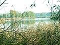 Głogów, Poland - panoramio (3).jpg