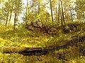 G. Novouralsk, Sverdlovskaya oblast', Russia - panoramio (146).jpg