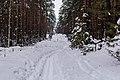 G. Ryazan', Ryazanskaya oblast', Russia - panoramio (4).jpg