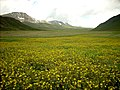 GB Deosai National Park -6.jpg