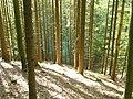 Gaildorf, Germany - panoramio.jpg