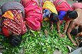 Gajan Sannyasi Rolling over Leaves - Bainan - Howrah 2015-04-14 8061.JPG
