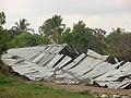 Galera de gallinas derrumbadas por vientos - panoramio.jpg