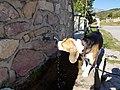 Galichnik, Macedonia (FYROM) - panoramio - BETASPED d.o.o. (13).jpg