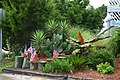 Garden (Pawleys Island, South Carolina - 18 July 2006).jpg