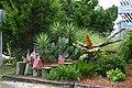 Garden (Pawleys Island, South Carolina - 18 July 2006).jpg
