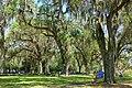 Garden view - Bok Tower Gardens - DSC02269.jpg