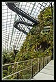 Gardens by the Marina Bay - Dome Clouds 02 (8332672068).jpg