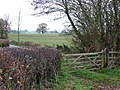 Gate and Fields near Neenton, Shropshire - geograph.org.uk - 615616.jpg