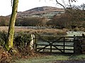 Gate beside Northway Bridge - geograph.org.uk - 680537.jpg
