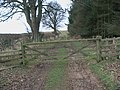 Gateway in West Linkhall farm track near Heater Wood - geograph.org.uk - 1091803.jpg