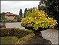 Gazzada - Parco di villa Cagnola - Complesso monumentale del XVIII secolo con parco collinare. Park Villa Cagnola - Monumental complex of the eighteenth century with hillside park - panoramio (1).jpg