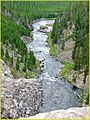 Gibbon River, Yellowstone.N.P 9-11 (13901781764).jpg