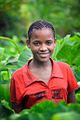 Girl in Taro Field, Ethiopia (15361601037).jpg
