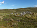 Glendue Fell - geograph.org.uk - 214607.jpg
