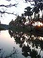Godavari river at Batlapalem.jpg
