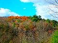 Governor Dodge State Park during Autumn - panoramio (3).jpg