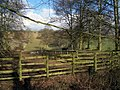Green Fence - geograph.org.uk - 1715991.jpg