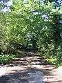 Green Lane, Great Warley - geograph.org.uk - 54479.jpg