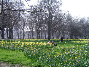 Green Park - Image: Green Park, London, England