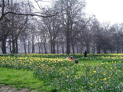 Công viên xanh Luân Đôn
