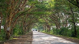 Natogyi Township Township in Mandalay Division, Burma