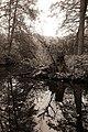 Großer Tiergarten in Berlin, Bild 12.jpg