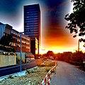 Grosspeter Tower Basel Sunset.jpg