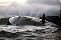 HMS Talent Surfacing Drills MOD 45151068.jpg