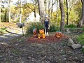 Halloween Pumpkin at Farmer house Havre De Grace, MD - panoramio.jpg