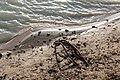 Haltern am See, Silbersee III, Stahlseil -- 2020 -- 7701.jpg
