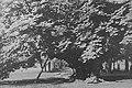 Harodna, Tyškievič. Гародна, Тышкевіч (1919-39) (26).jpg