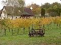 Hegymagas, 8265 Hungary - panoramio (3).jpg