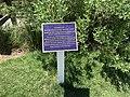 Henry Drexler USN Commemorative Plaque.jpg