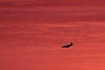 Hercules welcomes Swansboro sunrise 150309-M-PJ332-003.jpg