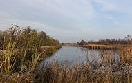 Herfstwandeling door natuurreservaat It Wikelslân 01.jpg
