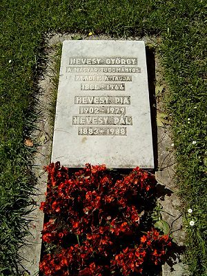 George de Hevesy - George de Hevesy's grave in Budapest. Cemetery Kerepesi: 27 Hungarian Academy of Sciences.