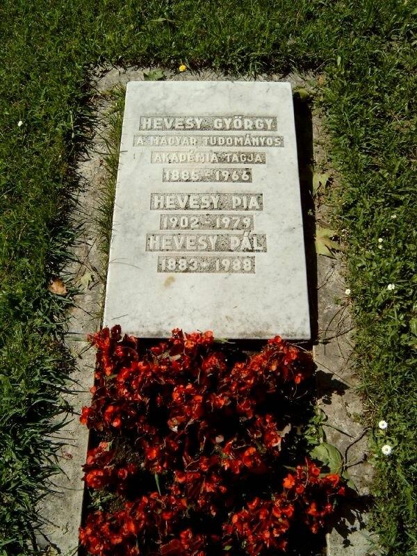 Hevesy György sírja