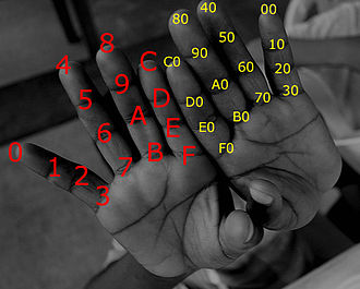 Hexadecimal - Hexadecimal finger-counting scheme.