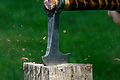 High-speed pic of a hatchet smashing a sweetgum fruit.jpg